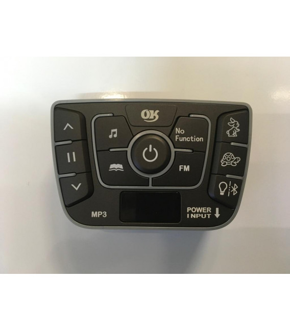 Interface Audio BMW X6
