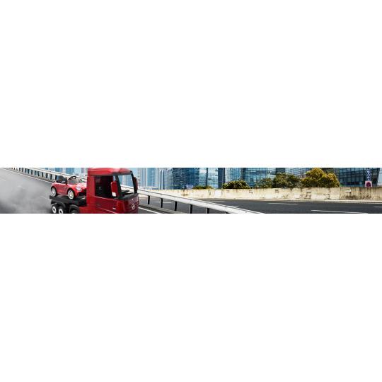 Camions / Trucks